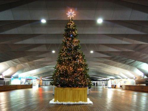 大桟橋埠頭のクリスマスイルミネーション-500x375
