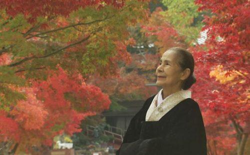 半澤鶴子さん「女ひとり 70歳の茶事行脚」がステキ!鶴の茶房の講習会や茶事も調査